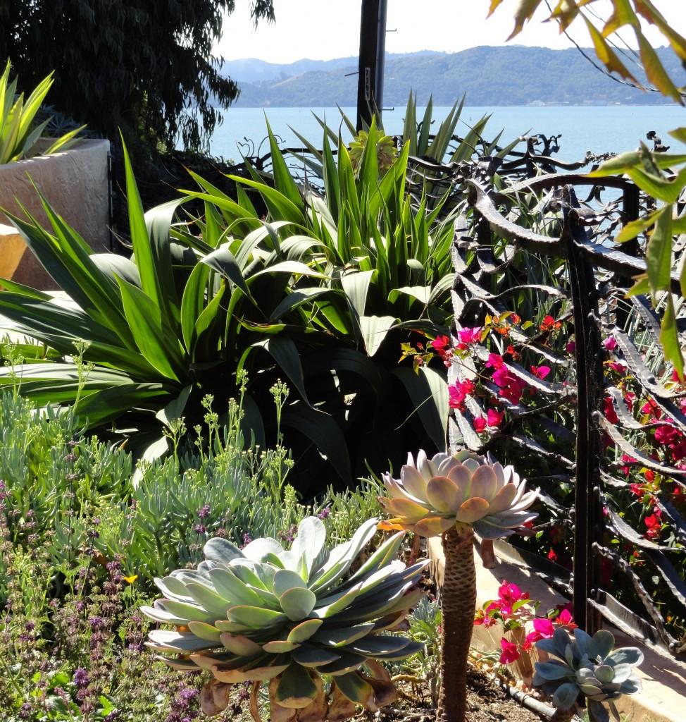 The Wave Garden - heaven