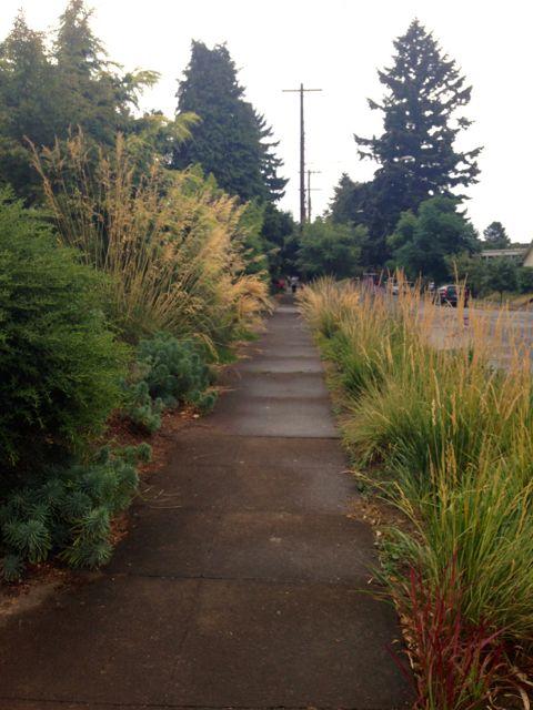 garden 2 sidewalk