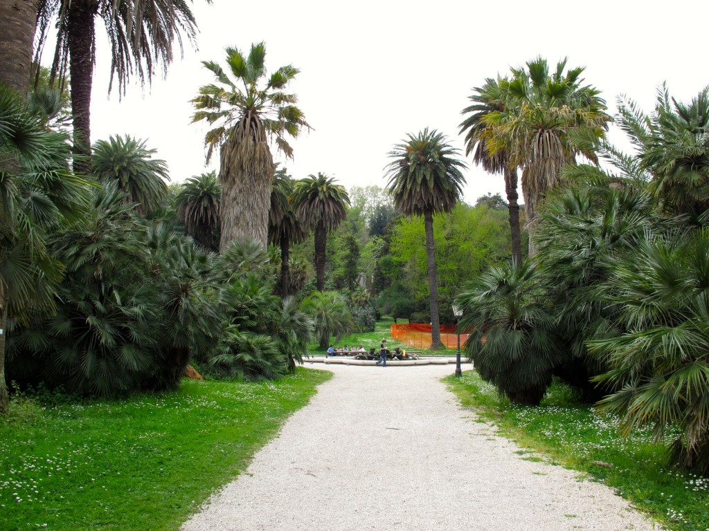 3 palm walk