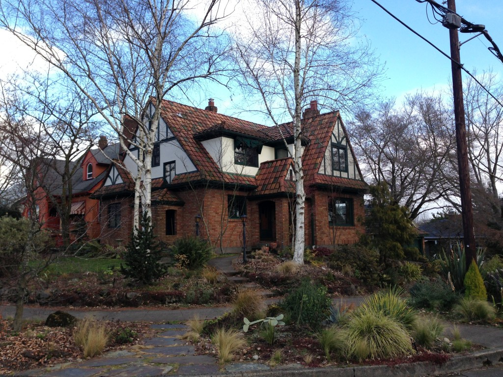 Alameda House with birches for winter interest and summer cooling.