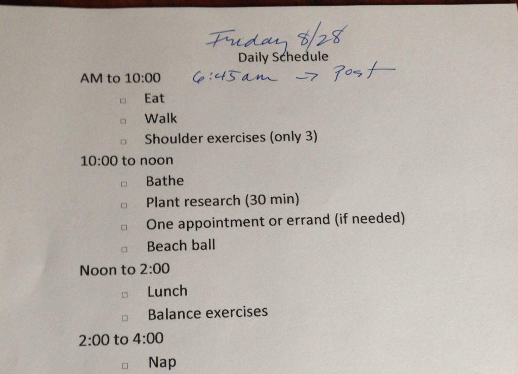 "my daily schedule, because I was doing ""too much"" and also, I can't remember what I've done or not done."