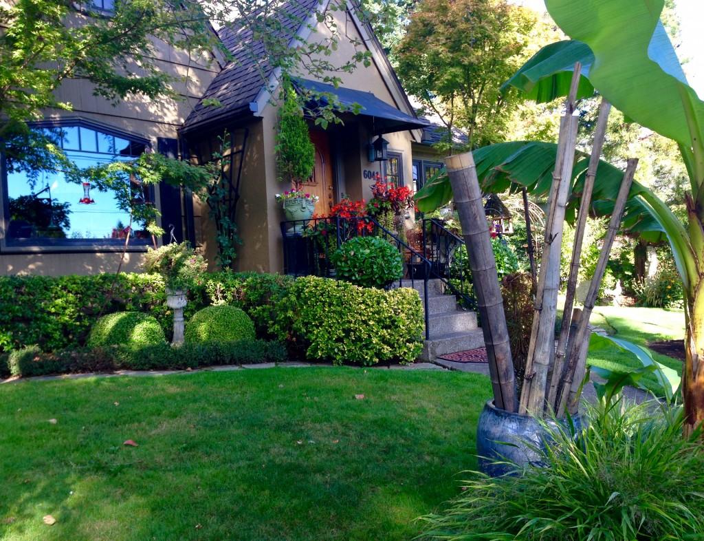 A garden in Concordia Neighborhood.