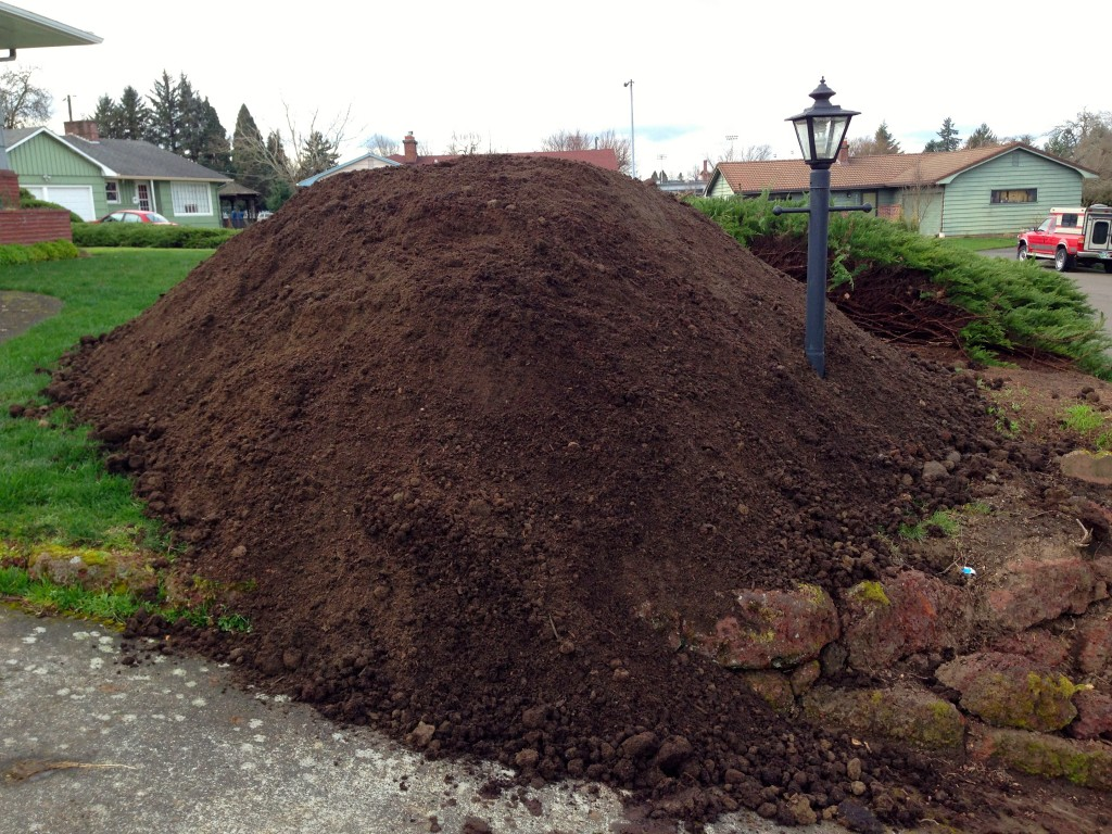 Grass under the compost pile disappeared.