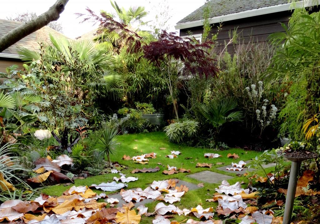 autumn abundance c