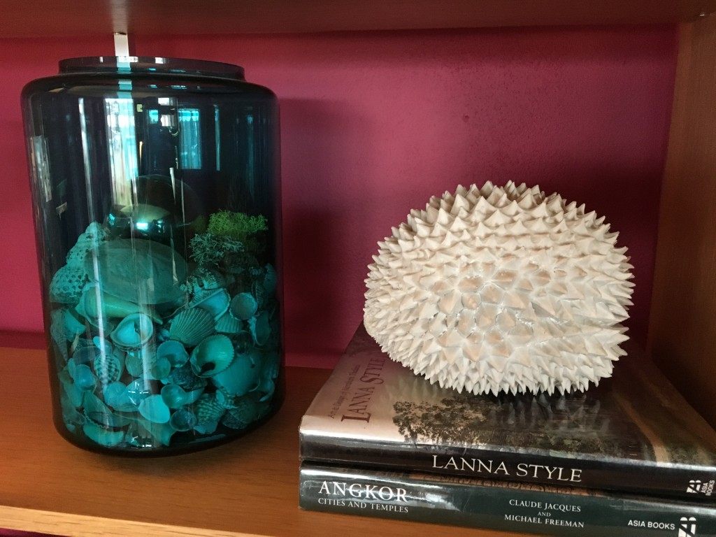 Shelf vignette with seed pod? and sea shells.