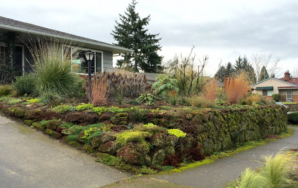 The big picture, with sedum corner in the foreground.