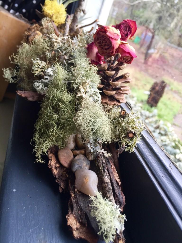 bark tray with rocks