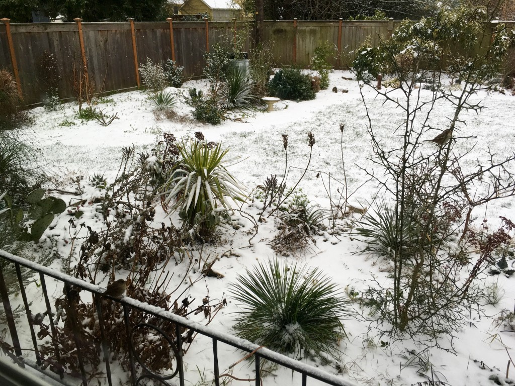 Portland style snowpocalypse.