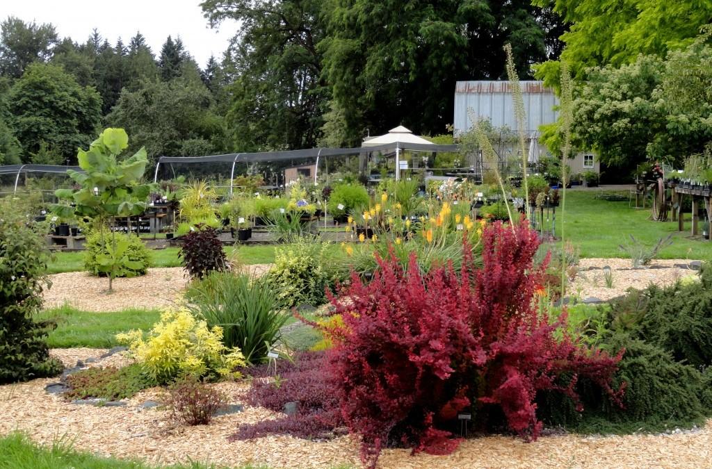 Visting Secret Garden Growers