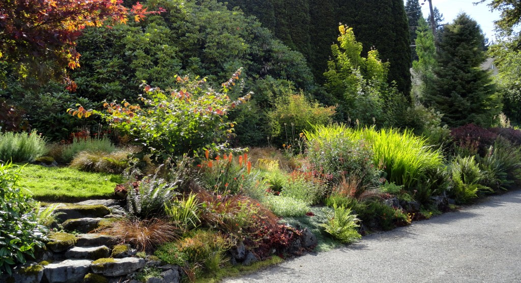 Another open garden…