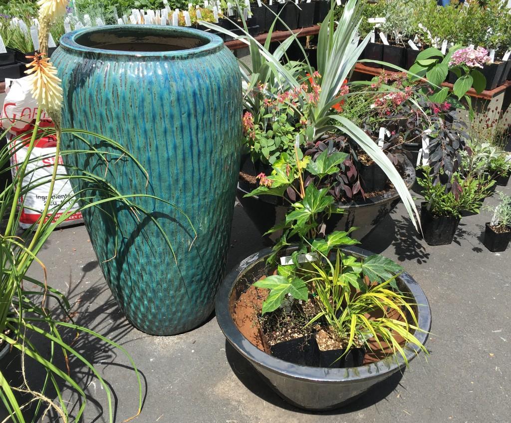 Grouping three pots makes for a terrific scenario.