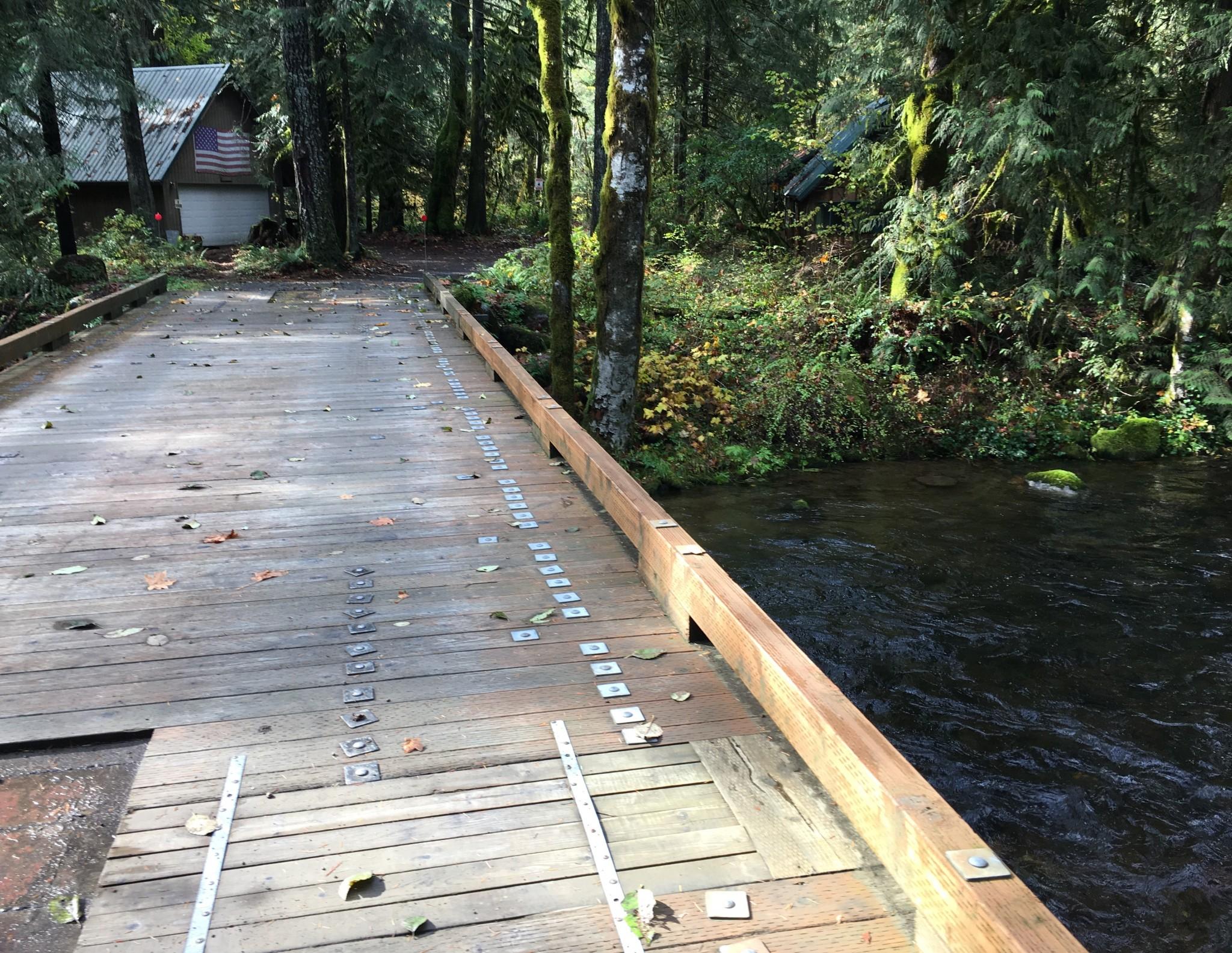 Wee bridge over the Salmon River.