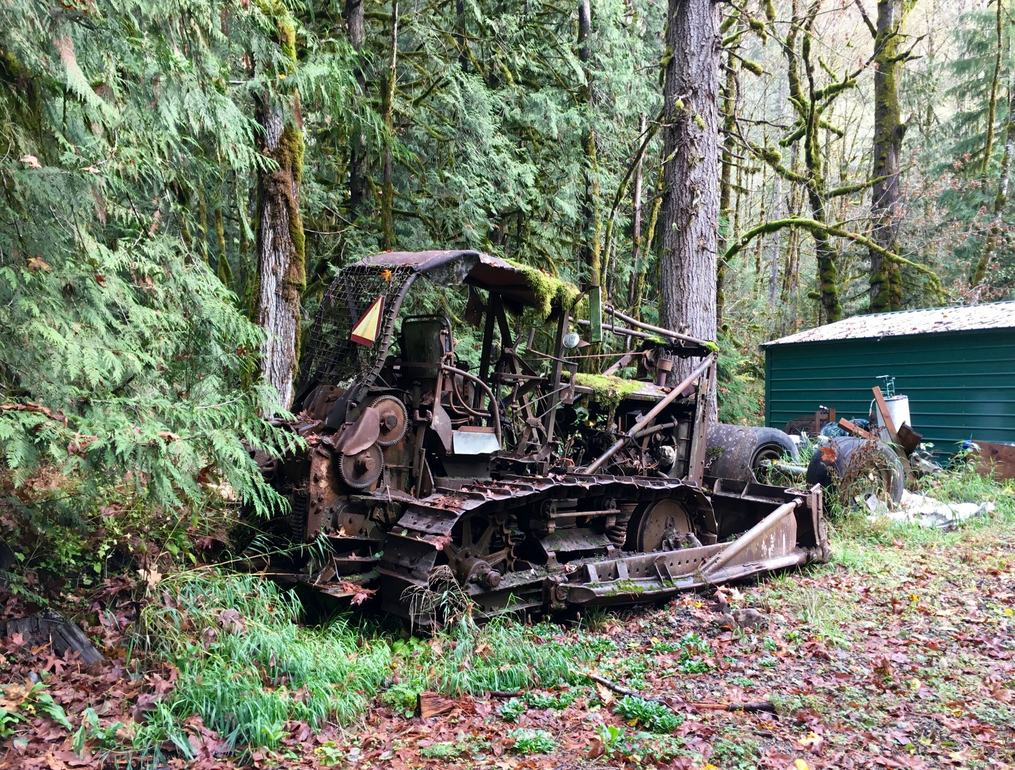 Giant yard art; it works in the woods.