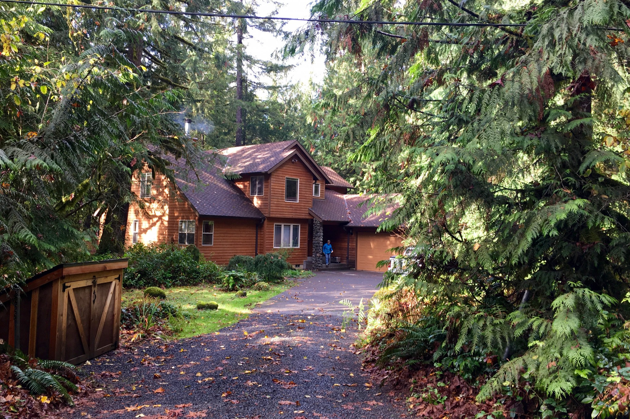 Cozy cabin in the woods -- with 5 bedrooms.