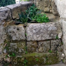 corner planting