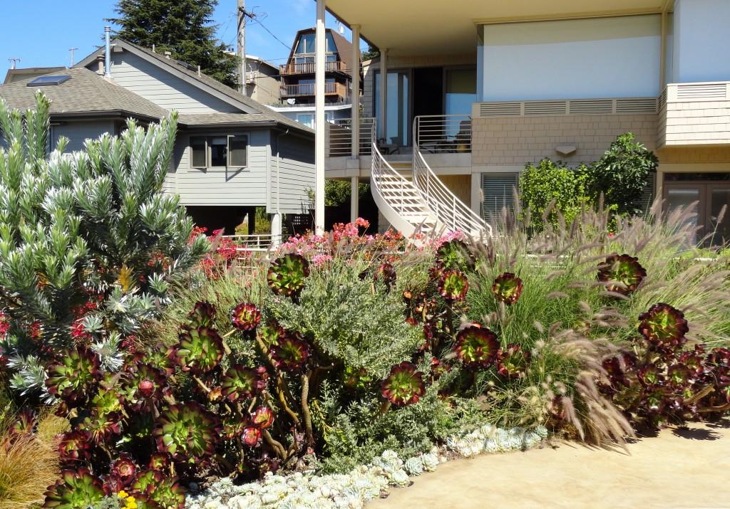 The Wave Garden e