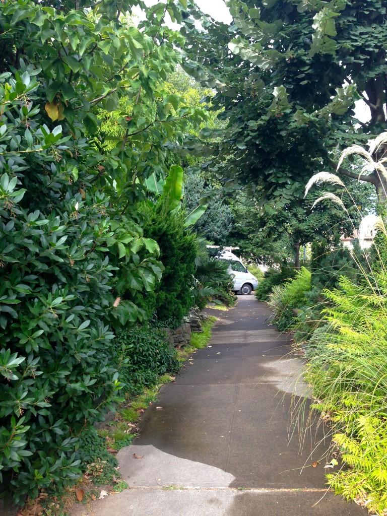 garden 1 sidewalk