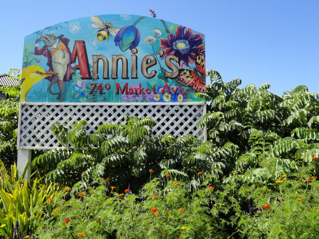 Annies 100