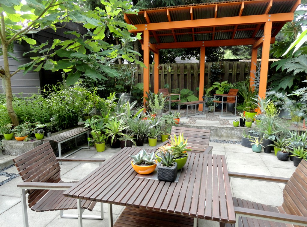 Looking at this image of my patio I realize Grace is right, I have space for at least 50 more containers!
