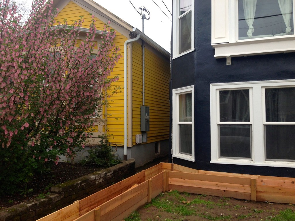 10 black and yellow houses