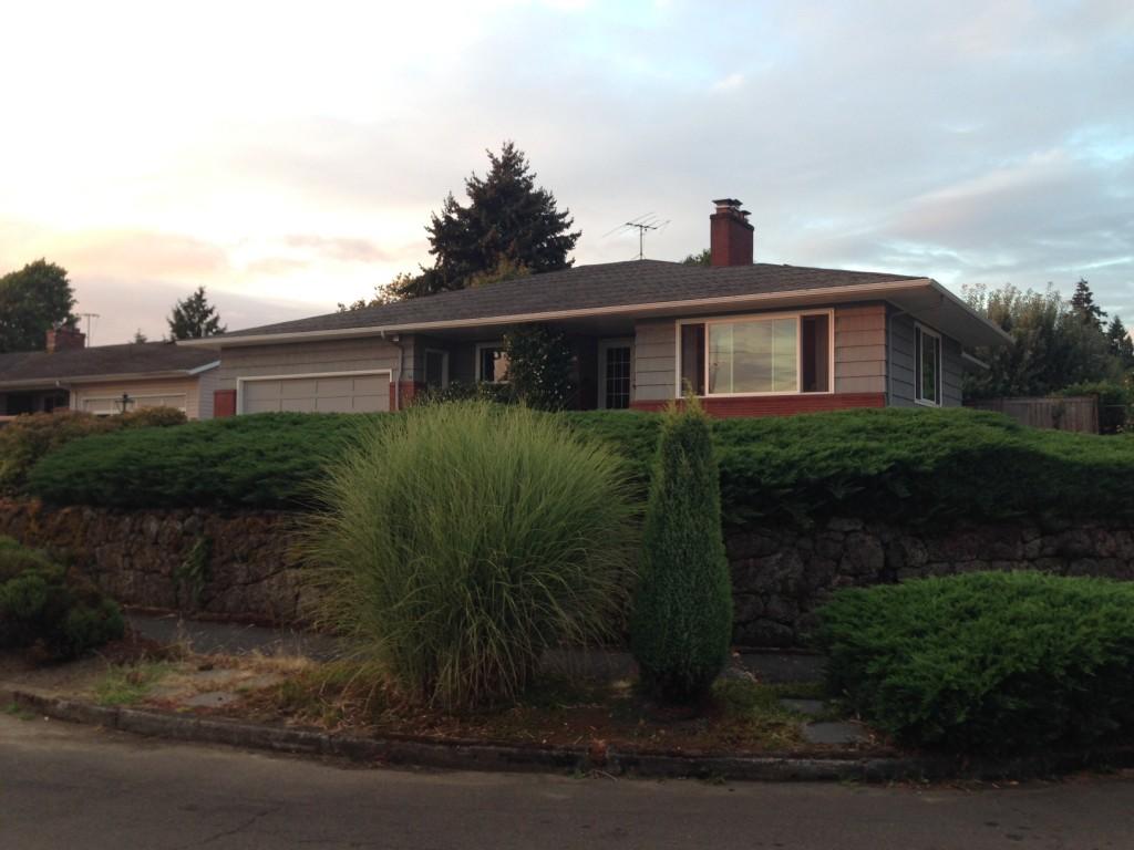 Flamingo Park house with Juniper.