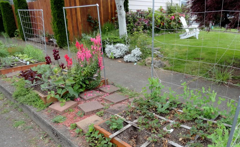 sgft garden1