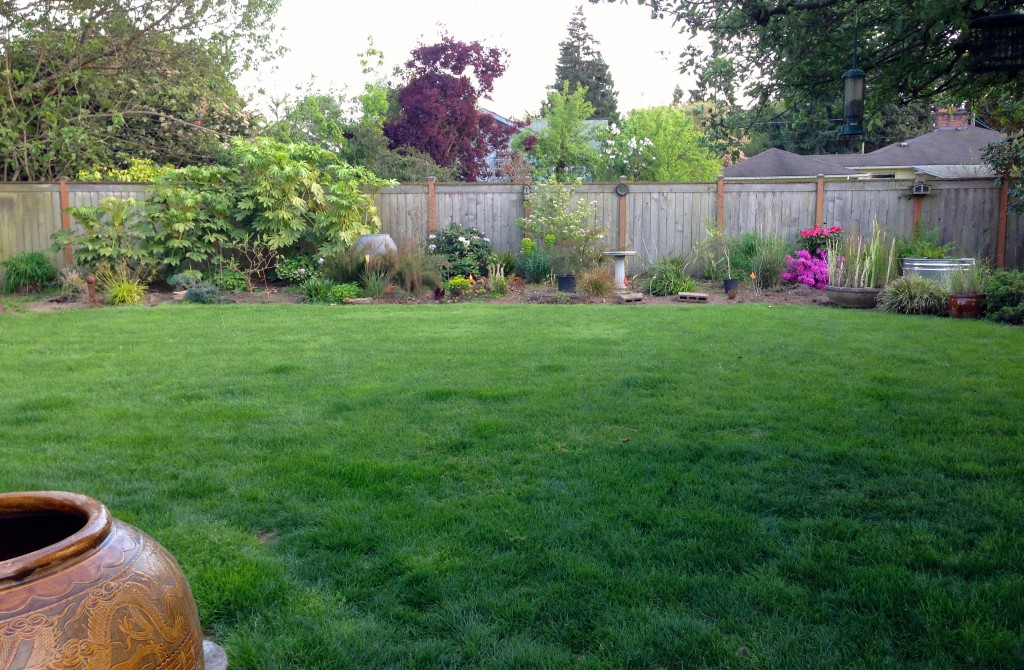 If I have to weed the whole backyard first, I'll never get to anything else.