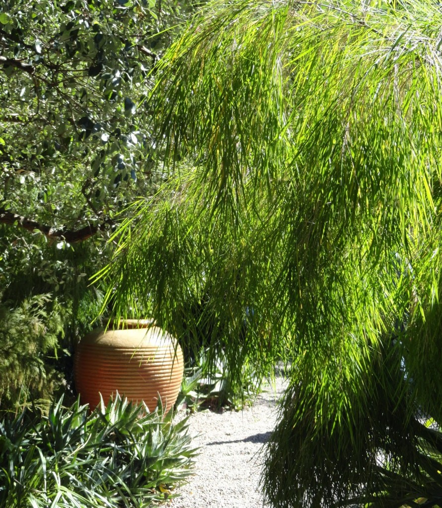 Testa-Vought Garden 2013