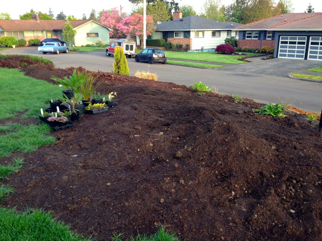 Clear bed with fresh compost, a beautiful sight/site.