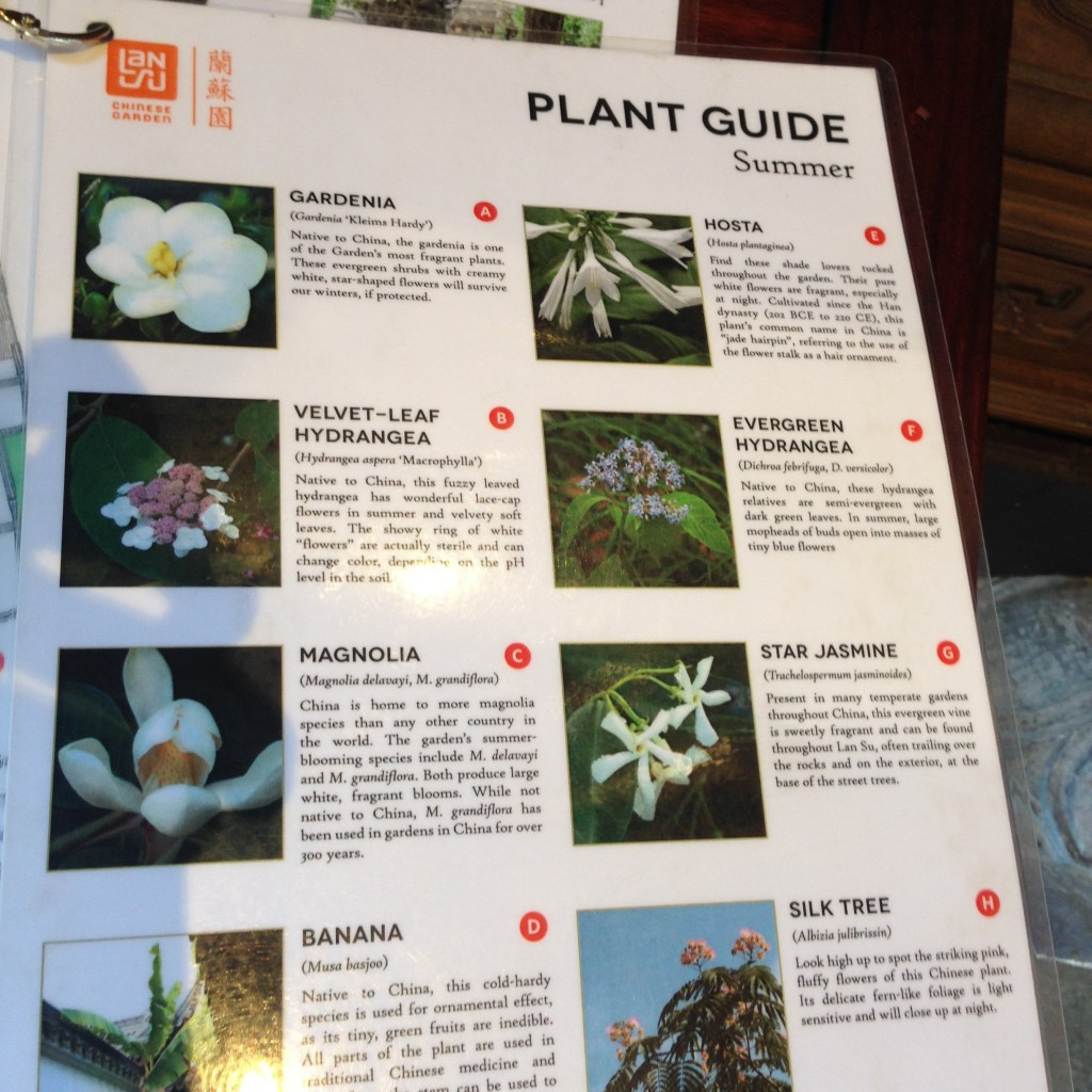 plant guides strew about freely