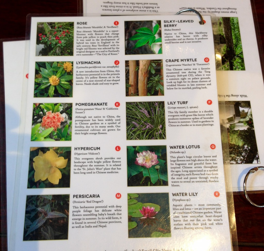 and more plant guide