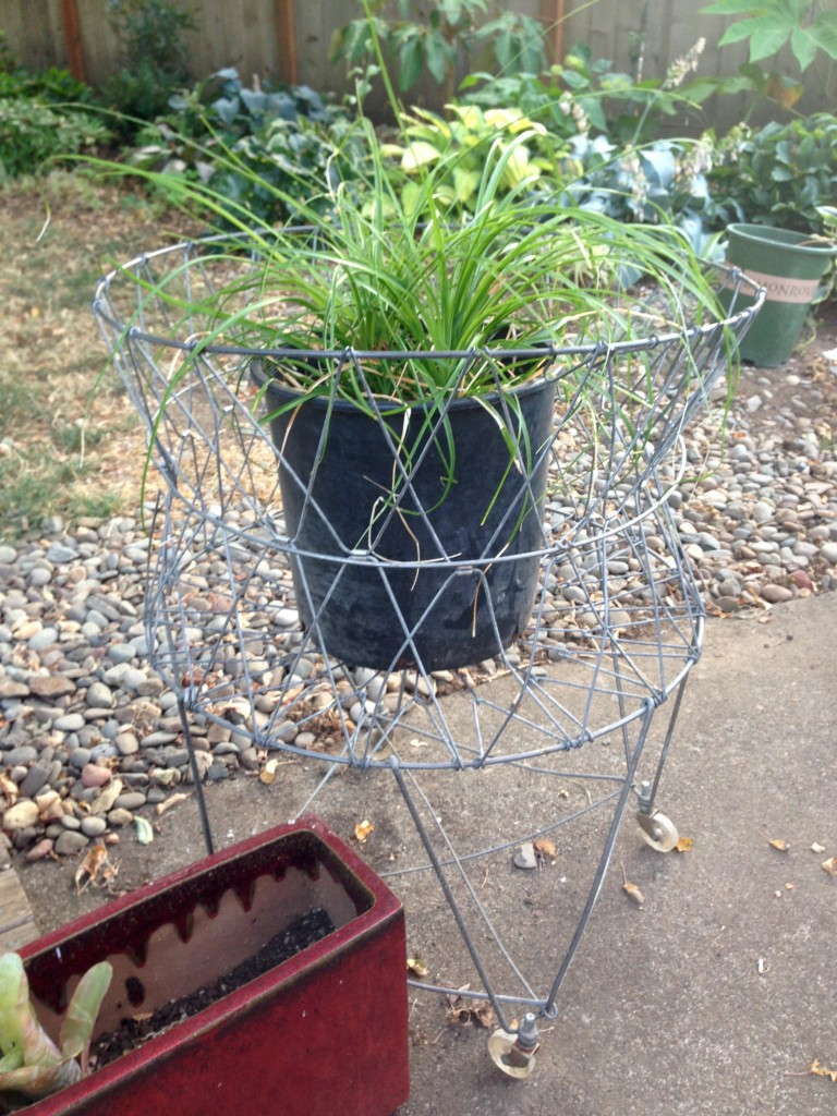 Cart with Ponytail Plant.