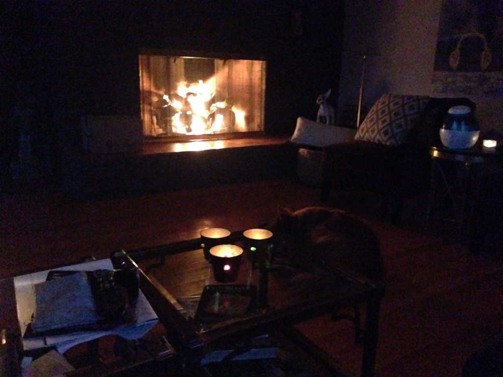 A manual gas fireplace is  good during outages.  And I have lots of candles. But candles + cats=challenge.