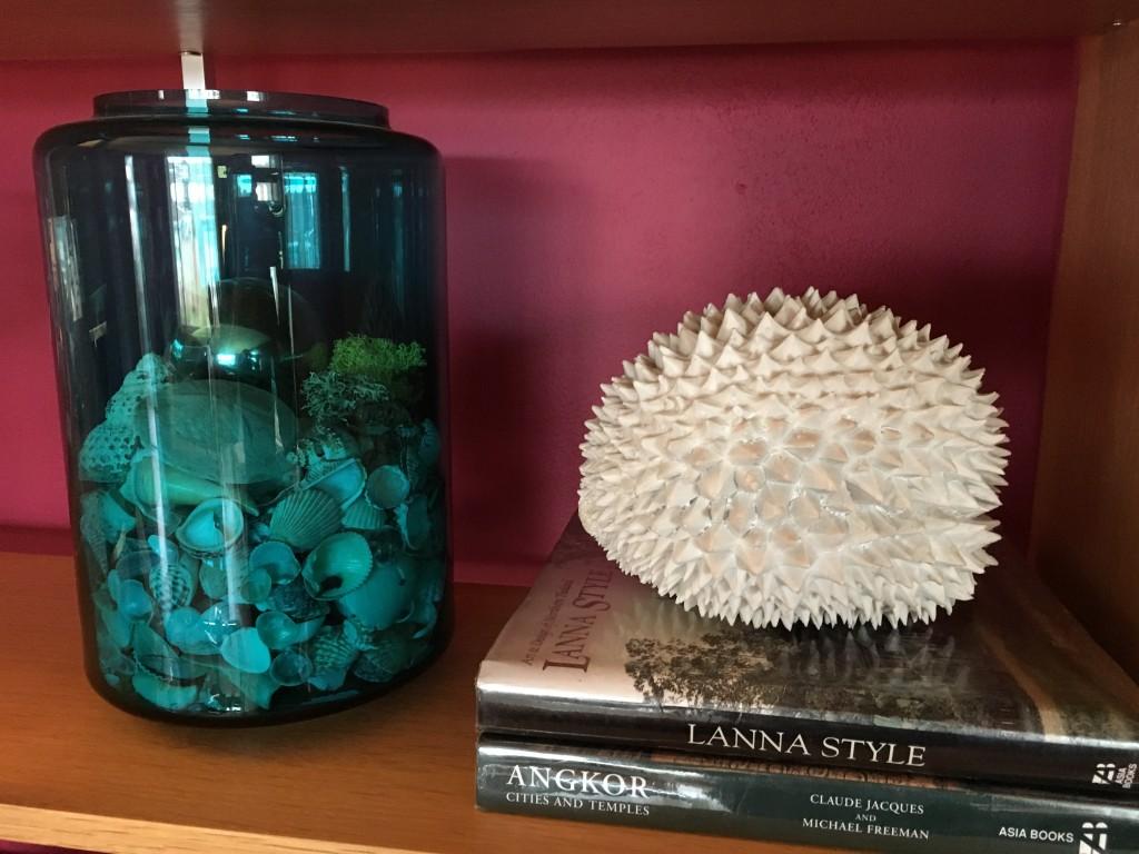 Shelf vignette with seed pod? and sea shells.