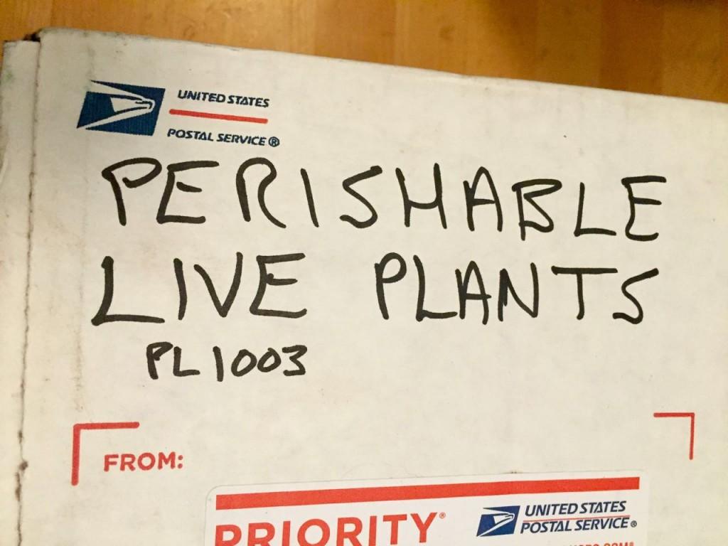 perishable live plants