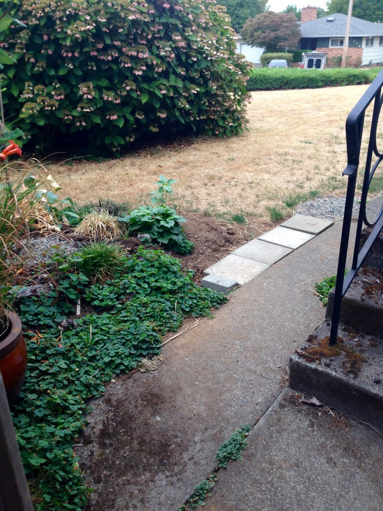 Our side stoop & temporary pavers to get an idea.