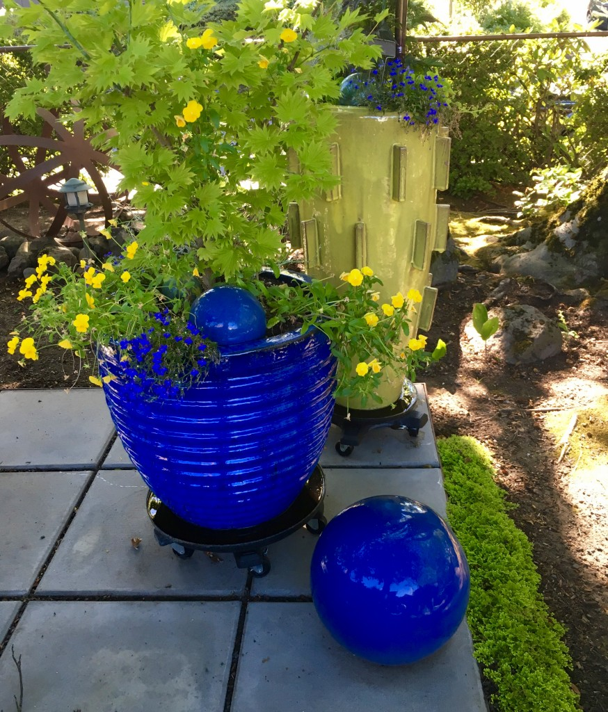 Blue pot with companion yellow pot.