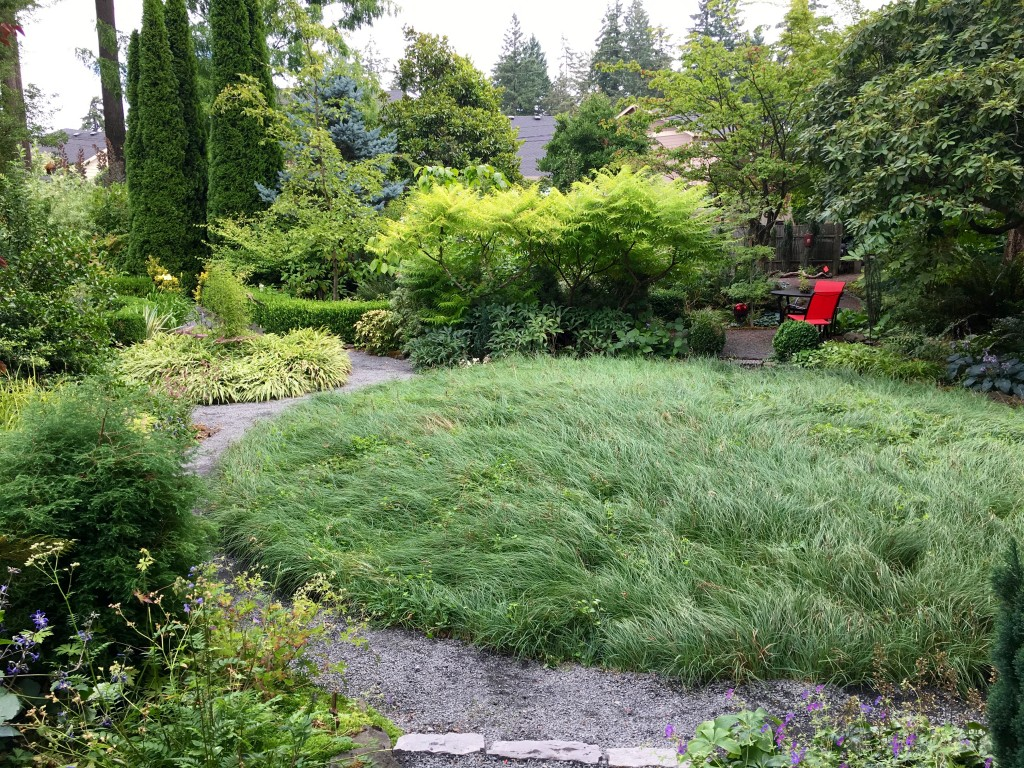 A 22' circle bed planted with Carex glauca.