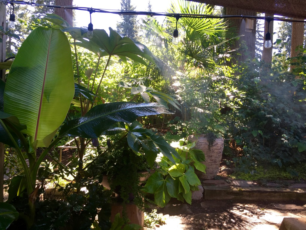 Misters not only keep the garden cool, but ad to the ethereal look.
