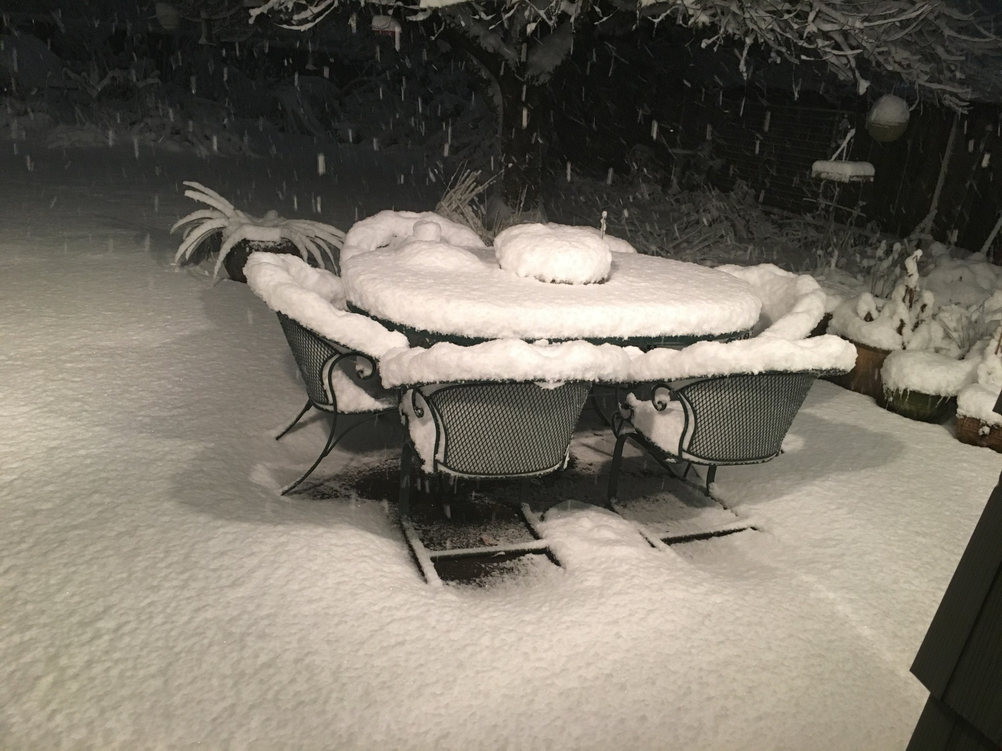 Second patio table shot at 9:42 p.m., or an hour and a half later.